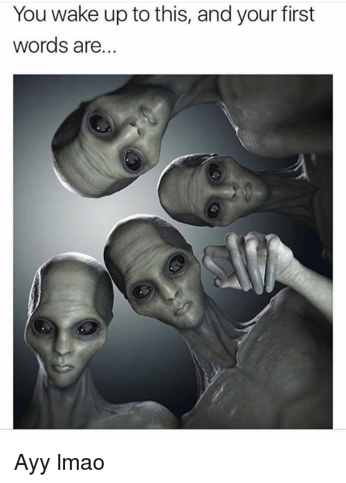 Ayy LMAO, Lmao, and First: You wake up to this, and your first  words are... Ayy lmao
