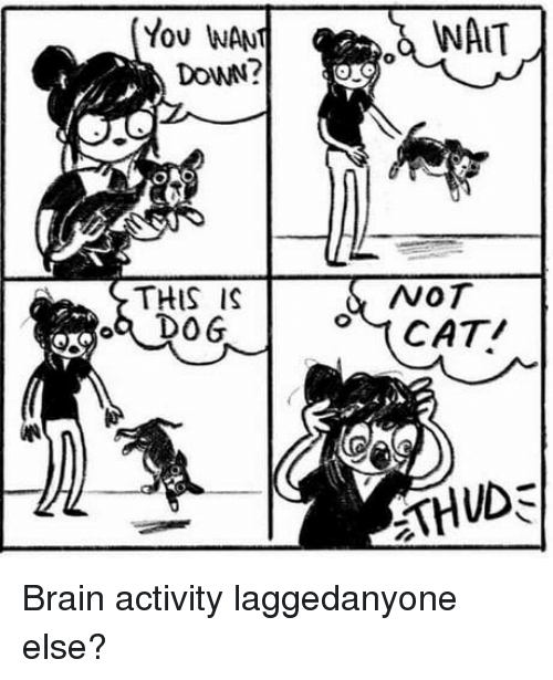Wat, Brain, and Down: You WANT  DoWN?  WAT  THIS IS  a DO6  NOT Brain activity laggedanyone else?