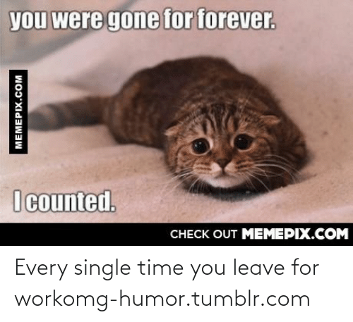 You Were Gone For Forever I Counted: you were gone for forever.  I counted.  CНECK OUT MЕМЕРIХ.COМ  MEMEPIX.COM Every single time you leave for workomg-humor.tumblr.com