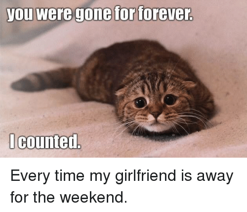 You Were Gone For Forever I Counted: you Were gone for forever  I counted Every time my girlfriend is away for the weekend.