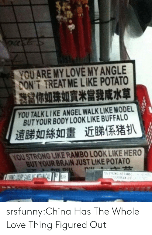 Rambo: YOUARE MY LOVE MY ANGLE  ONT TREAT ME LIKE POTATO  你如珠如,,當我咸水草  YOU TALKLIKE ANGEL WALK LIKE MODEL  BUT YOUR BODY LOOK LIKE BUFFALO  遠睇如絲如畫近睇係猪扒  YOU STRONG LIKE RAMBO LOOK LIKE HERO  BUT YOUR BRAIN JUST LIKE POTATO srsfunny:China Has The Whole Love Thing Figured Out