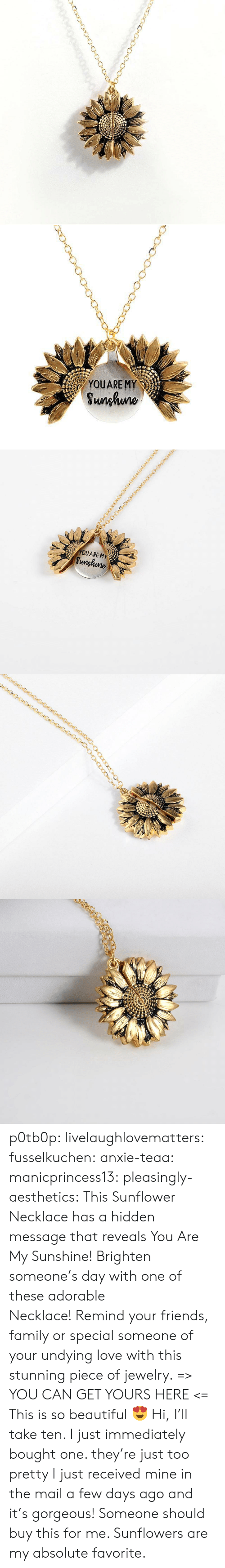Beautiful, Family, and Friends: YOUARE MY  Sunhuno   YOUARE MY  Sunghune p0tb0p:  livelaughlovematters: fusselkuchen:  anxie-teaa:   manicprincess13:   pleasingly-aesthetics:  This Sunflower Necklace has a hidden message that reveals You Are My Sunshine! Brighten someone's day with one of these adorable Necklace!Remind your friends, family or special someone of your undying love with this stunning piece of jewelry. => YOU CAN GET YOURS HERE <=   This is so beautiful 😍    Hi, I'll take ten.    I just immediately bought one. they're just too pretty   I just received mine in the mail a few days ago and it's gorgeous!   Someone should buy this for me. Sunflowers are my absolute favorite.