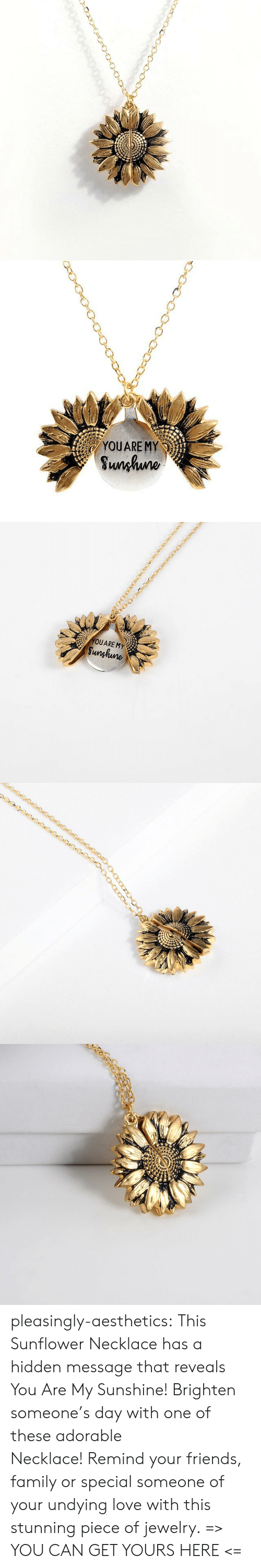 Family, Friends, and Love: YOUARE MY  Sunhuno   YOUARE MY  Sunghune pleasingly-aesthetics: This Sunflower Necklace has a hidden message that reveals You Are My Sunshine! Brighten someone's day with one of these adorable Necklace!Remind your friends, family or special someone of your undying love with this stunning piece of jewelry. => YOU CAN GET YOURS HERE <=