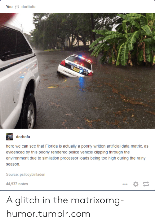 Glitch In The Matrix: Youdoritofu  doritofu  here we can see that Florida is actually a poorly written artificial data matrix, as  evidenced by this poorly rendered police vehicle clipping through the  environment due to similation processor loads being too high during the rainy  season  Source: psilocybinladen  44,537 notes A glitch in the matrixomg-humor.tumblr.com