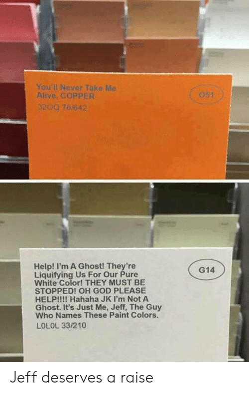 lolol: You'll Never Take Me  Alive, COPPER  3200 76/642  Help! I'm A Ghost! They're  Liquifying Us For Our Pure  White Color! THEY MUST BE  STOPPED! OH GOD PLEASE  HELP!!!! Hahaha JK I'm Not A  Ghost. It's Just Me, Jeff, The Guy  Who Names These Paint Colors.  LOLOL 33/210  G14 Jeff deserves a raise