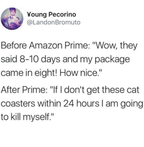 """Amazon, Amazon Prime, and Wow: Young Pecorino  @LandonBromuto  Before Amazon Prime: """"Wow, they  said 8-10 days and my package  came in eight! How nice.""""  After Prime: """"If I don't get these cat  coasters within 24 hours I am going  to kill myself."""""""