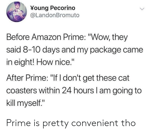 "Amazon, Amazon Prime, and Wow: Young Pecorino  @LandonBromuto  Before Amazon Prime: ""Wow, they  said 8-10 days and my package came  in eight! How nice.""  After Prime: ""If I don't get these cat  coasters within 24 hours l am going to  kill myself."" Prime is pretty convenient tho"