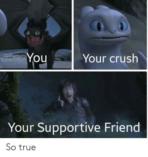 Crush, True, and Friend: Your crush  You  Your Supportive Friend So true