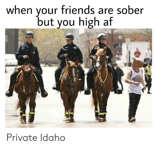 High AF: your friends are sober  but you high af  when  oshioif  OUNTED Private Idaho