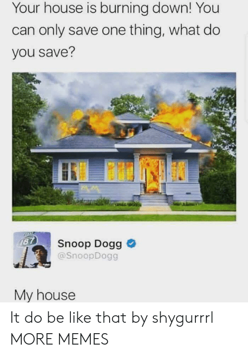 dogg: Your house is burning down! You  can only save one thing, what do  you save?  187  Snoop Dogg  @SnoopDogg  My house It do be like that by shygurrrl MORE MEMES