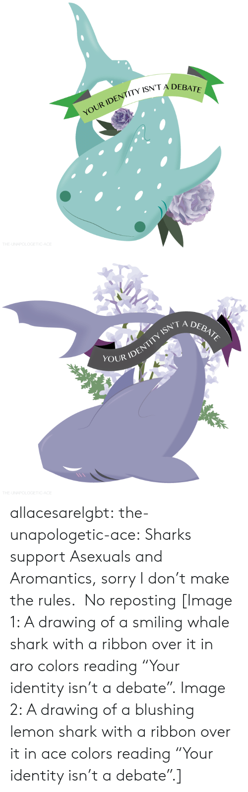"""Sorry, Target, and Tumblr: YOUR IDENTITY ISN  THE-UNAPOLOGETIC-ACE   ISN'T A  DEBATE  OUR IDENT  THE-UNAPOLOGETIC-ACE allacesarelgbt:  the-unapologetic-ace:  Sharks support Asexuals and Aromantics, sorry I don't make the rules. No reposting  [Image 1: A drawing of a smiling whale shark with a ribbon over it in aro colors reading""""Your identity isn't a debate"""". Image 2: A drawing of a blushing lemon shark with a ribbon over it in ace colors reading""""Your identity isn't a debate"""".]"""