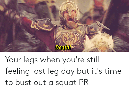 Squat: Your legs when you're still feeling last leg day but it's time to bust out a squat PR