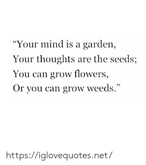 "Flowers, Mind, and Weeds: ""Your mind is a garden  Your thoughts are the seeds;  You can grow flowers,  Or you can grow weeds."" https://iglovequotes.net/"