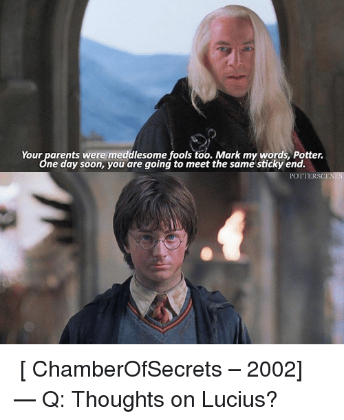 Memes, Parents, and Soon...: Your parents were meddlesome fools too. Mark my words, Potter.  ne day soon, you are going to meet the same sticky end.  POTTER SC ➙ [ ChamberOfSecrets – 2002] — Q: Thoughts on Lucius?