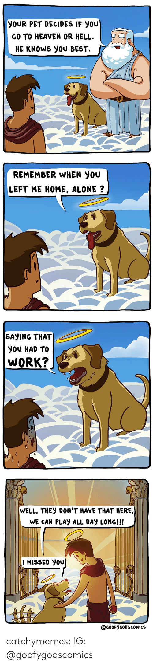 missed: YOUR PET DECIDES IF YOU  GO TO HEAVEN OR HELL.  HE KNOWS YOU BEST.   REMEMBER WHEN YOU  LEFT ME HOME, ALONE ?   SAYING THAT  YOU HAD TO  WORK?   WELL, THEY DON'T HAVE THAT HERE,  WE CAN PLAY ALL DAY LONG!!!  I MISSED YOU  @GOOFYGODSCOMICS catchymemes:  IG: @goofygodscomics