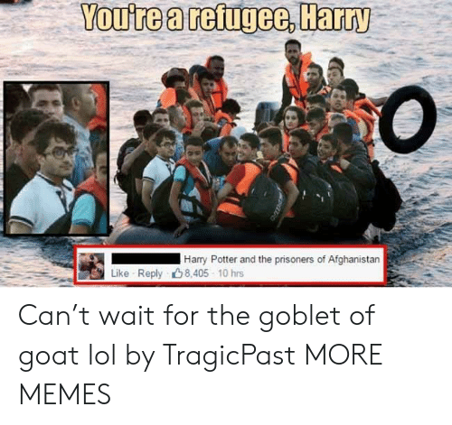 refugee: You're a refugee, Harry  Harry Potter and the prisoners of Afghanistan  Like Reply 8,405 10 hrs Can't wait for the goblet of goat lol by TragicPast MORE MEMES