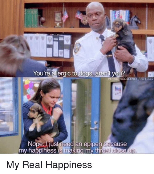 Dogs, Nope, and Happiness: You're allergic to dogs, aren't you?  AGO SCENES I IG I 1  Nope, just meed an epipen because  my happiness is making my throat close My Real Happiness