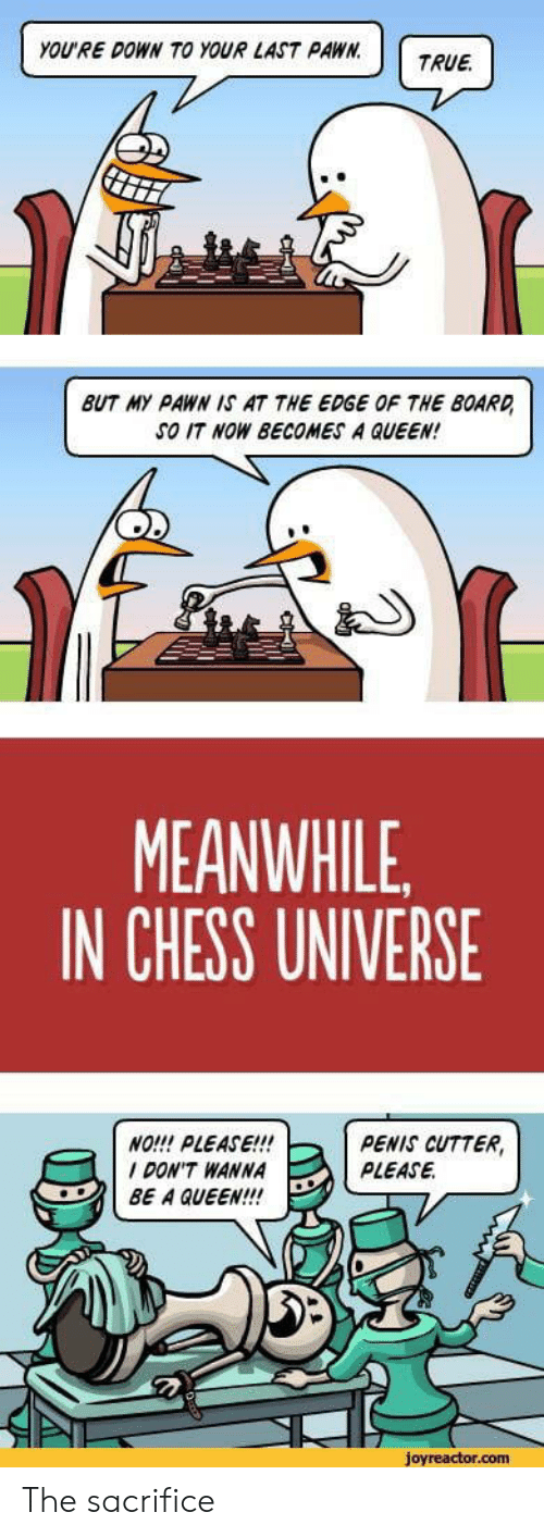 pawn: YOU'RE DOWN TO YOUR LAST PAWN.  TRUE  BUT MY PAWN IS AT THE EDGE OF THE BOARD  SO IT NOW BECOMES A QUEEN!  MEANWHILE  IN CHESS UNIVERSE  NO!!! PLEASE!!!  DON'T WANNA  BE A QUEEN!!  PENIS CUTTER,  PLEASE  joyreactor.com The sacrifice