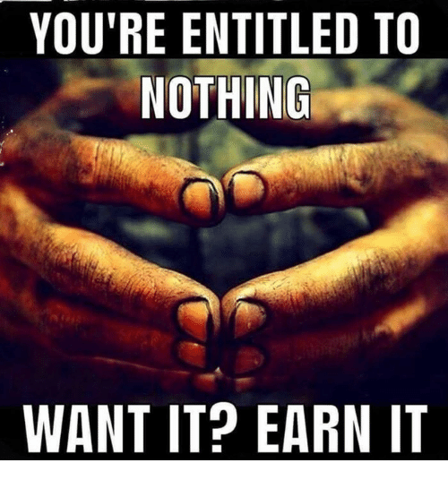 Memes, Entitled, and 🤖: YOU'RE ENTITLED TO  NOTHING  WANT IT? EARN IT