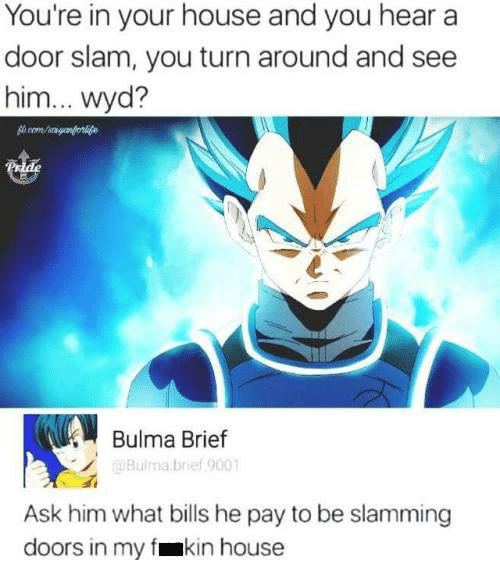 door slam: You're in your house and you hear a  door slam, you turn around and see  him... wyd?  Bulma Brief  @Bulma brief 9001  Ask him what bills he pay to be slamming  doors in my fmkin house