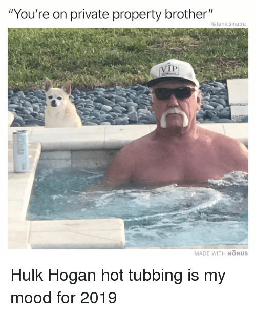 """Funny, Hulk Hogan, and Mood: """"You're on private property brother""""  @tank.sinatra  VIP  MADE WITH MOMUS Hulk Hogan hot tubbing is my mood for 2019"""