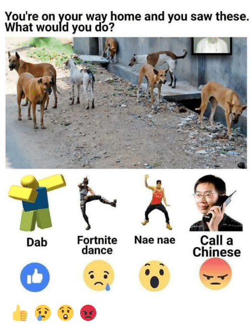 Nae Dance: You're on your way home and you saw these.  What would you do?  Call a  Chinese  Fortnite Nae nae  dance  Dab 👍 😢 😲 😡
