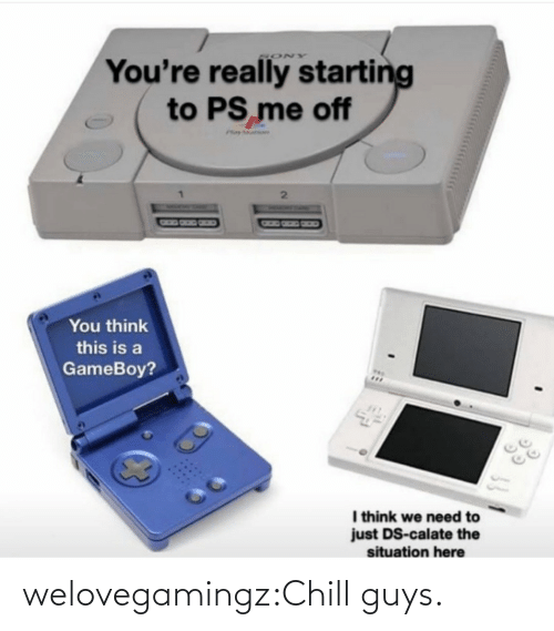 Situation: You're really starting  to PS me off  SONY  Phay ar  You think  this is a  GameBoy?  I think we need to  just DS-calate the  situation here welovegamingz:Chill guys.