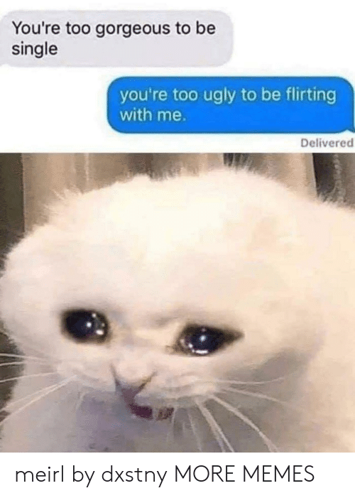 Dank, Memes, and Target: You're too gorgeous to be  single  you're too ugly to be flirting  with me.  Delivered meirl by dxstny MORE MEMES