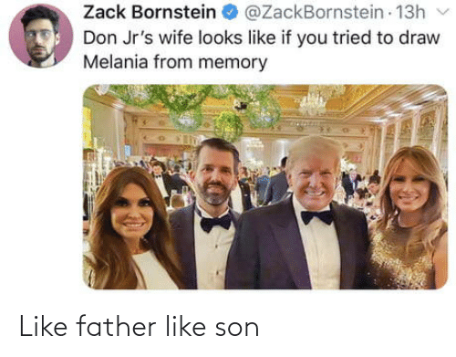 Melania: Zack Bornstein  @ZackBornstein 13h  Don Jr's wife looks like if you tried to draw  Melania from memory Like father like son