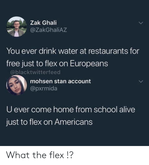 U Ever: Zak Ghali  @ZakGhaliAZ  You ever drink water at restaurants for  free just to flex on Europeans  @blacktwitterfeed  mohsen stan account  @pxrmida  U ever come home from school alive  just to flex on Americans What the flex !?