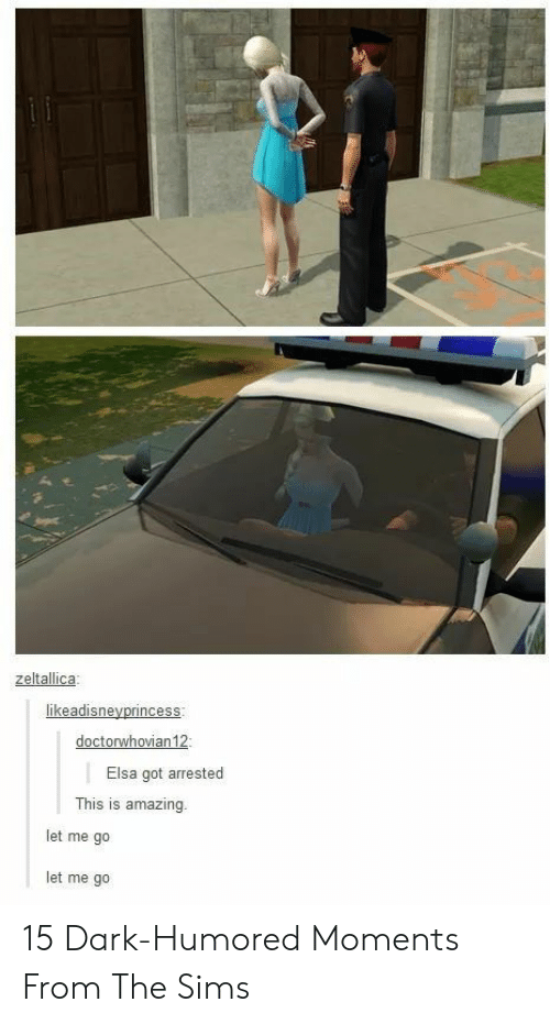Elsa, The Sims, and Sims: zeltallica  Elsa got arrested  This is amazing.  let me go  let me go 15 Dark-Humored Moments From The Sims