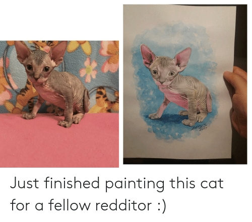 Cat, Painting, and For: ZEXYS  2019 Just finished painting this cat for a fellow redditor :)