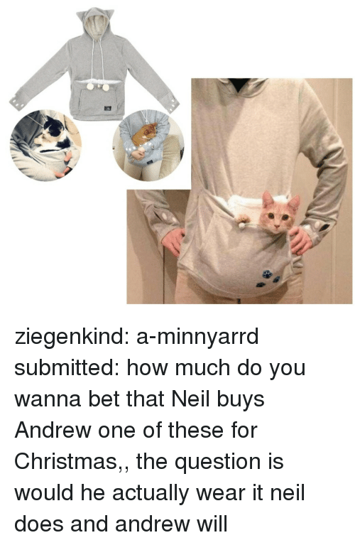 Christmas, Target, and Tumblr: ziegenkind: a-minnyarrd submitted: how much do you wanna bet that Neil buys Andrew one of these for Christmas,, the question is would he actually wear it neil does and andrew will