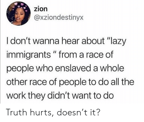 """Dont Wanna: zion  @xziondestinyx  I don't wanna hear about """"lazy  immigrants """" from a race of  people who enslaved a whole  other race of people to do all the  work they didn't want to do Truth hurts, doesn't it?"""