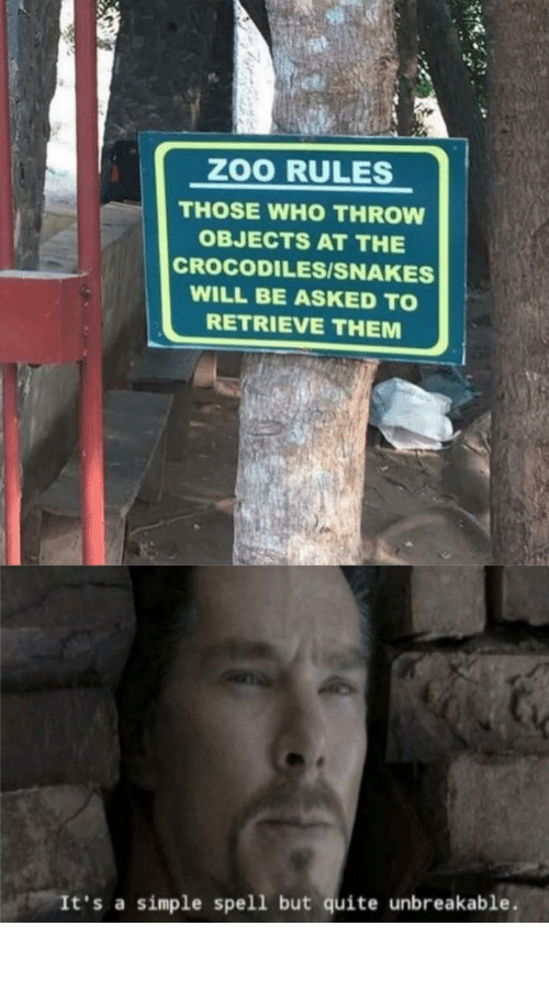 Be Like, Quite, and Snakes: ZOO RULES  THOSE WHO THROW  OBJECTS AT THE  CROCODILES/SNAKES  WILL BE ASKED TO  RETRIEVE THEM  It's a simple spell but quite unbreakable. It do be like that