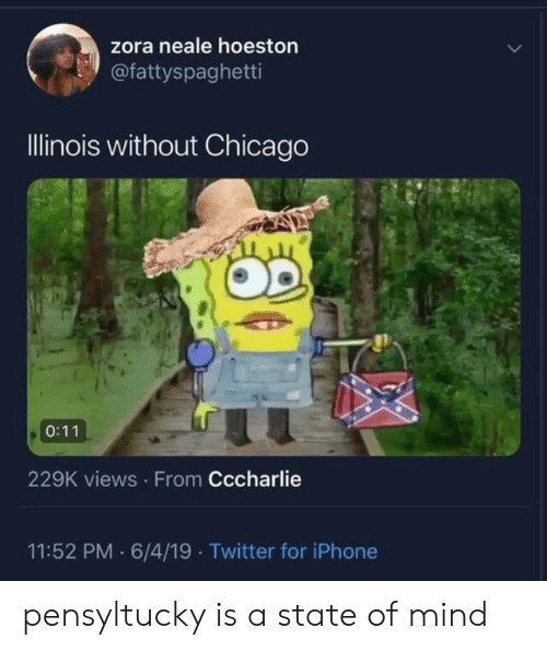 Views From: zora neale hoeston  @fattyspaghetti  Illinois without Chicago  0:11  229K views From Cccharlie  11:52 PM 6/4/19 Twitter for iPhone pensyltucky is a state of mind